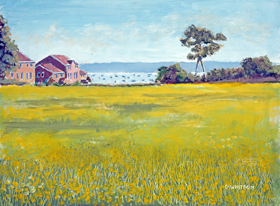Buttercup Meadow Priddys Hard - Art Prints and Painting For Sale
