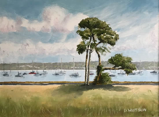 Trees Portsmouth Harbour